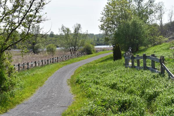 Kanik Trail.JPG